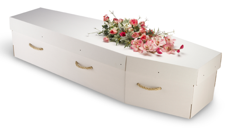 Cardboard Coffin Example 2