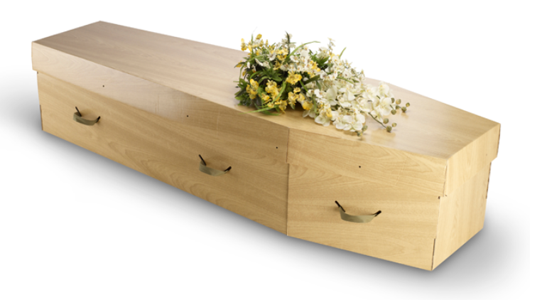 Cardboard Coffin Example 1